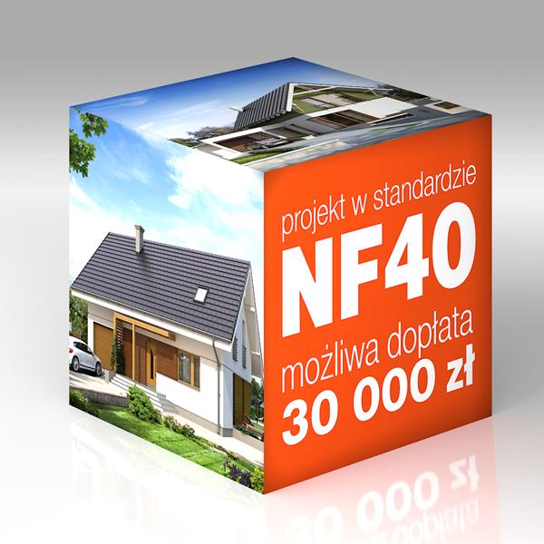 kostka-nf40